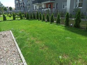 A garden outside Apartament z ogródkiem