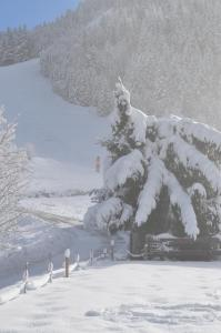La Foret De Maronne during the winter