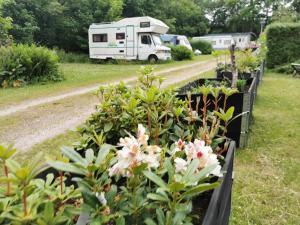 En have udenfor Danhostel & City Camping Frederiksværk