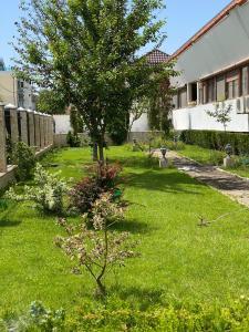 O grădină în afara Apartament Smarald
