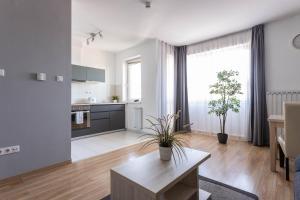 Una cocina o zona de cocina en Corvin Plaza Apartments & Suites