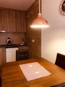 A kitchen or kitchenette at Mikka Lake Placid