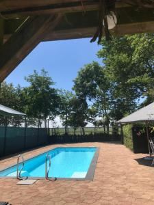The swimming pool at or near B&B Plompetorenzicht