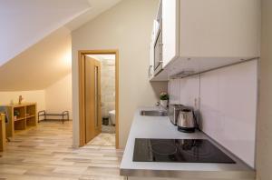 Küche/Küchenzeile in der Unterkunft Soukenická Apartcomplex 2