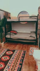 Giường tầng trong phòng chung tại BigDog Homestay