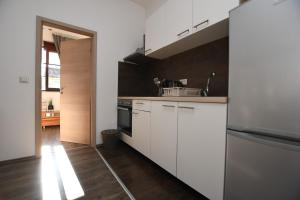 A kitchen or kitchenette at Apartments Deak