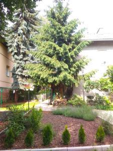 A garden outside Apartment On Zaliznychna