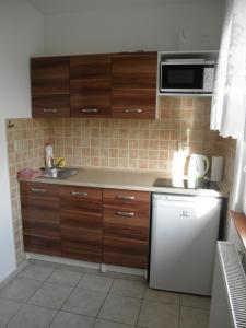 Kuchyň nebo kuchyňský kout v ubytování Penzion Ivana