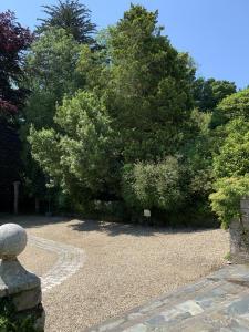 A garden outside Boscundle Manor