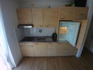 A kitchen or kitchenette at Daisy apartment