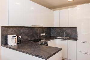 A kitchen or kitchenette at Park Hill Residences