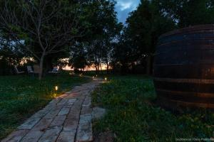 Vrt u objektu Pannonia Terranova B&B