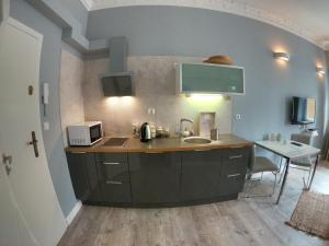 Kuchnia lub aneks kuchenny w obiekcie Apartamenty Apartlux