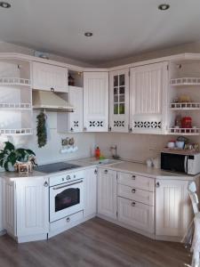 A kitchen or kitchenette at Novokosino 1