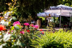 A garden outside Hotel & Restaurant Lengefelder Warte