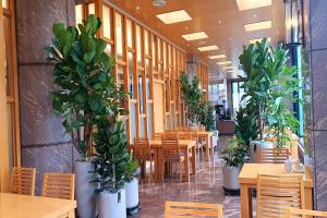 A restaurant or other place to eat at Arban Hotel