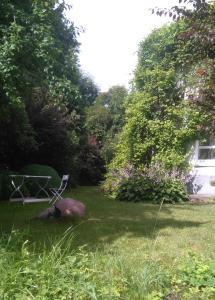 Сад в Ratshof Villa