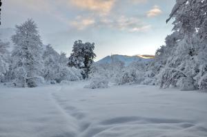 Chalet Ciprés during the winter