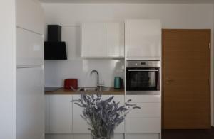 Kuchyň nebo kuchyňský kout v ubytování Ivana