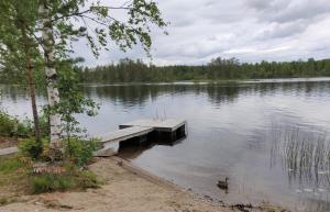 Loma-asunnon lähellä sijaitseva järvi