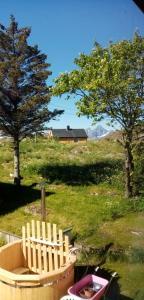 Ein Garten an der Unterkunft Lofoten Apartment + Rooms - Skrova