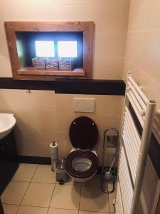 Koupelna v ubytování Apartmán Lesková