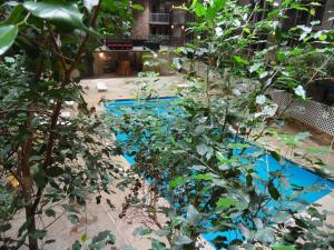 The swimming pool at or near 1Hotel