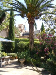 Jardín al aire libre en Palacio Chaves Hotel