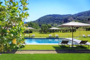 The swimming pool at or near Villa La Massa
