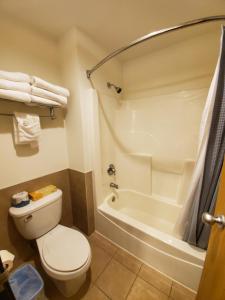A bathroom at Grand Bear Resort at Starved Rock