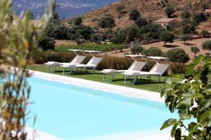 Vista sulla piscina di Albero Capovolto o su una piscina nei dintorni