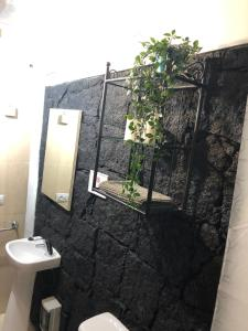 A bathroom at Casa Oliver