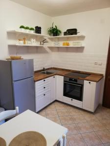 Kuchyňa alebo kuchynka v ubytovaní Apartmani Matiša