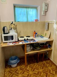 A kitchen or kitchenette at Brievienchatyi Domik