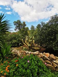 Giardino di Favignana Cocciu D'amuri