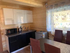 A kitchen or kitchenette at Rybatskiy Bereg