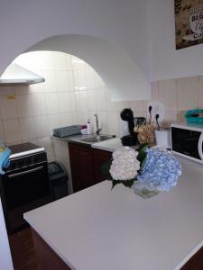 A cozinha ou cozinha compacta de Casa dos Valentes