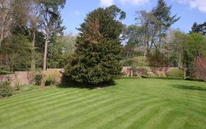 A garden outside Kirklands House Melrose Bed and Breakfast