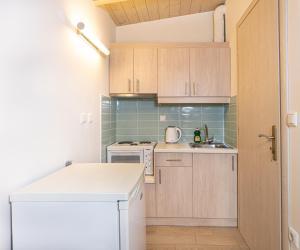 Кухня или мини-кухня в Apartments Korakakis Beach