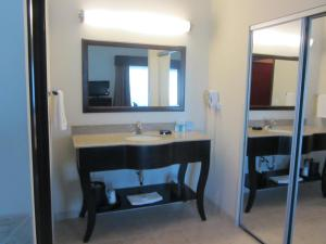 A bathroom at Hampton Inn & Suites Dumas