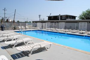 The swimming pool at or near Shore Point Motel