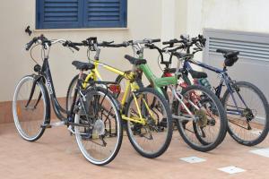 Attività di ciclismo presso la casa vacanze o nelle vicinanze