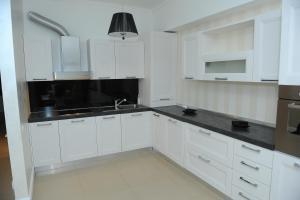 O bucătărie sau chicinetă la Apartament Tanya Tudor's Residence