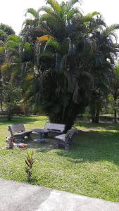 A garden outside Refugio do Lobo