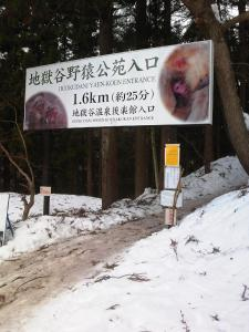Uotoshi Ryokan during the winter