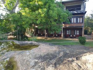 A garden outside Vintara Eco