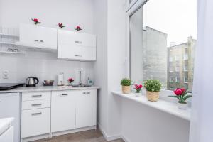 Kuchnia lub aneks kuchenny w obiekcie Tulip Apartments - studio nr 1 - Śmiałego 7 m 3