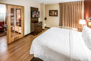 A room at Red Roof Inn PLUS+ Long Island - Garden City