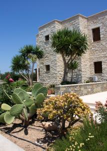 A garden outside Esperides Stone Houses