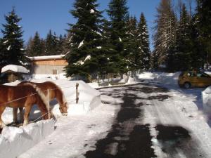 Ferienwohnung am Spitzberg im Winter